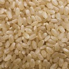 /ficheros/productos/arroz redondo integral.jpg